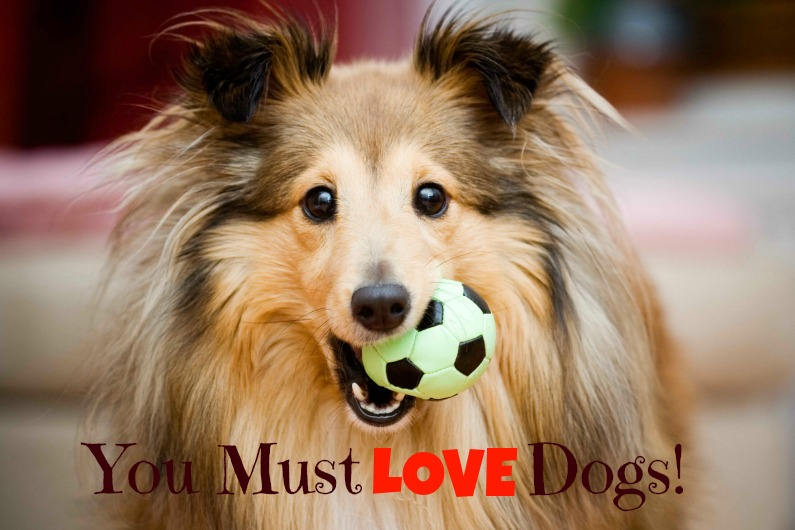 you must love dogs