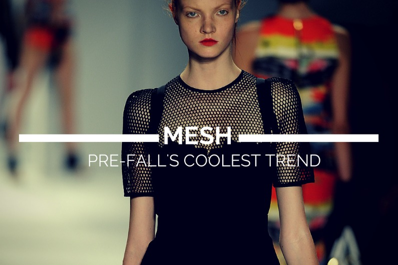 Mesh Pre-Fall's Coolest Trend